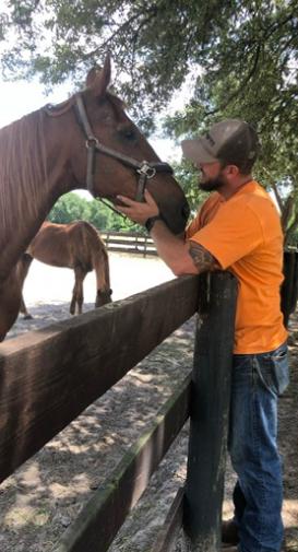 Horse Training at Licciardello Stables