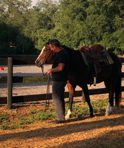 Licciardello Stables is a family run equestrian center