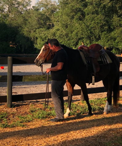 Licciardello Stables is a family run equestrian center
