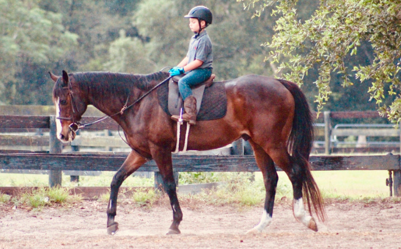 Horseback Riding at Licciardello Stables
