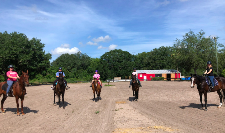 Horseback Riding Lessons at Licciardello Stables